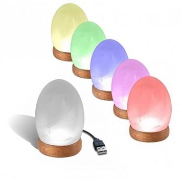 Himalayan Salt Lamps USB Egg